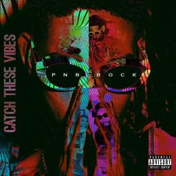 PnB Rock- Catch These Vibes